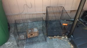 Bird and dog cage for Sale in San Antonio, TX