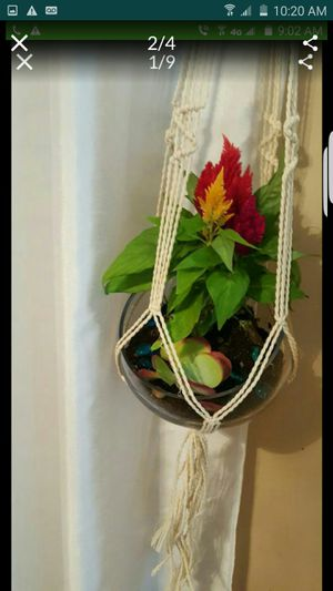 6 plant holders braided design new for Sale in Norwalk, CA