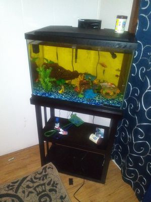 Fish tank with everything including stand for Sale in Lakeland, FL