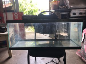 20 gallon aquarium w/ filter and heater for Sale in Tampa, FL