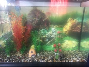 Fish Tank (60 Gallons) for Sale in Reynoldsburg, OH