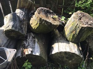 Free fire wood for Sale in Hilliard, OH