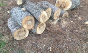 Free firewood for Sale in Upland, CA