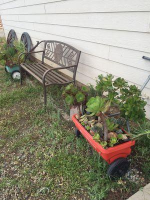 Planter Yard Art Succulent Arrangement Garden Decor for Sale in Ramona, CA