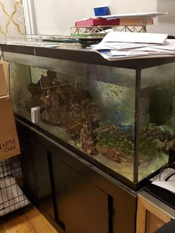 75 Gallon Fish Tank With 75lb Of Live Rock, Stand, Sand, Two Filters And Extra Glass for Sale in Brooklyn,  NY