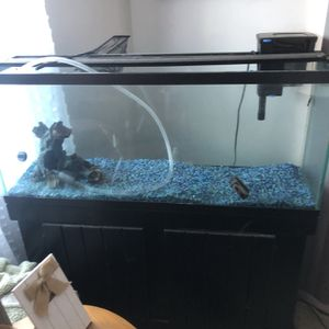 55 Gallon Fish Tank With Stand for Sale in Pawtucket, RI