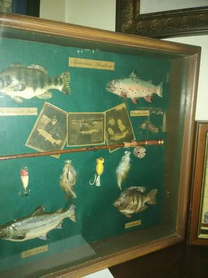Fly-fishing Rod Lures Fish shadow box .. for Sale in Clearwater, FL