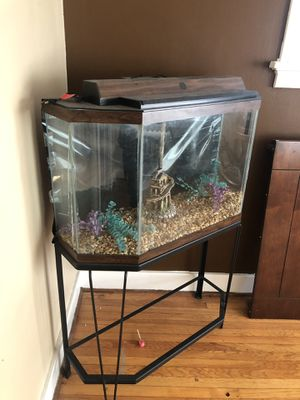 Fish tank, comes with everything you see for Sale in St. Louis, MO