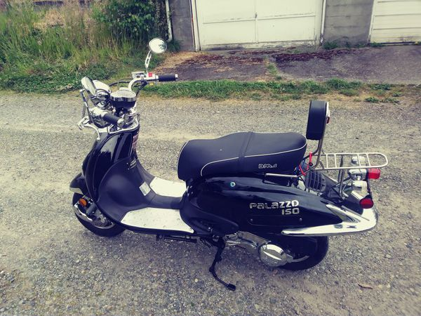 GREAT DEALS MOPED PALAZZO 150