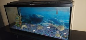 50 Fish tank EVERYTHING works for Sale in Upland, CA