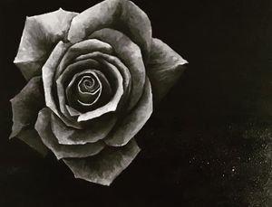 Rose Painting for Sale in Modesto, CA