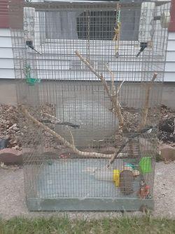 Bird Cage for Sale in Grand Prairie,  TX
