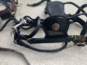 Pony harness for Sale in Vancouver, WA