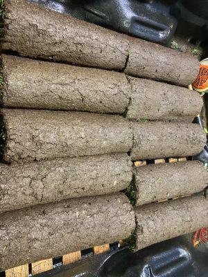 washington sod 10 rolls 2' x 4' for Sale in Seattle, WA