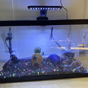 10 Gallon Glow In The Dark Fish Tank for Sale in San Marino, CA
