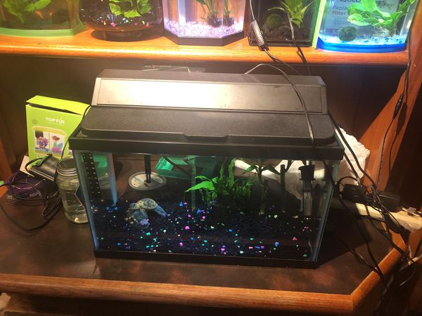10 gallon aquarium with hood light, filter and heater