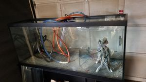 100 Gallon Fishtank w/ Everything for Sale in Portland, OR