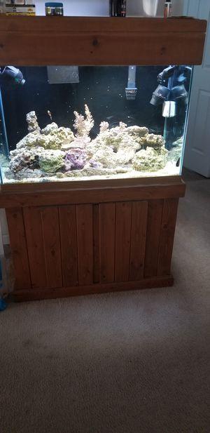 Aquarium for Sale in Jonesboro, GA