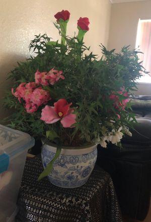 Fake plant for Sale in Modesto, CA