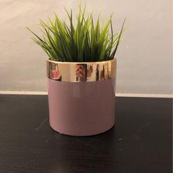 Fake Grass Plant for Sale in Alexandria,  VA