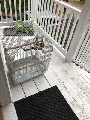 White Bird cage for Sale in Weymouth, MA