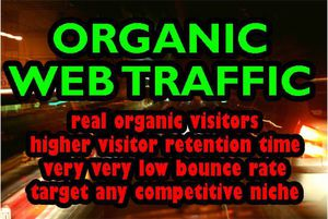 I Will drive traffic to website, promote website to real people for Sale in New Orleans, LA