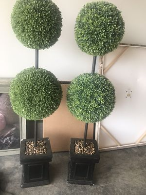 Set of 2 topiaries for Sale in Lexington, KY