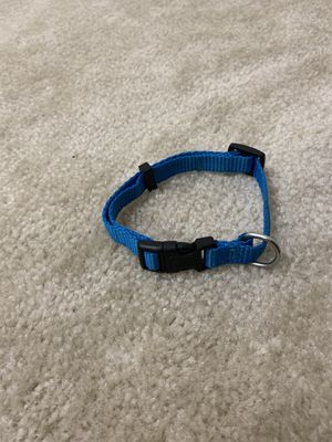 Blue Dog Collar for Sale in Greenbelt, MD