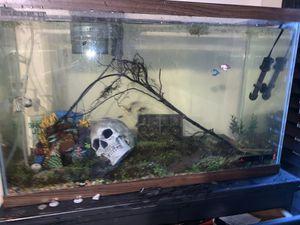 Fish Aquarium EVERYTHING for Sale in Dallas, TX