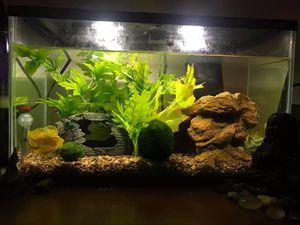 10Gal Aquaculture Fish Tank for Sale in Layton, UT