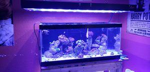 Custom Fish tank lights for Sale in Oklahoma City, OK