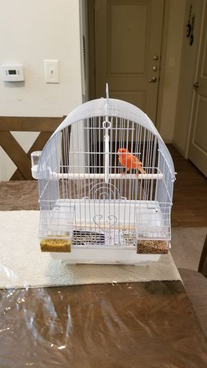 Cage for birds for Sale in Houston, TX