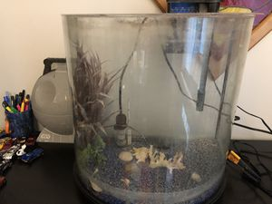 Now Front Fish Tank 15 Gallon with filter and heater for Sale in Arlington, VA
