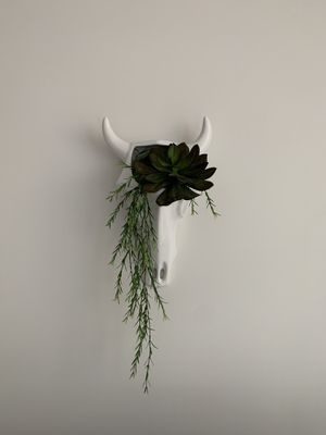 White Skull Planter Wall Hanging (faux plants included) for Sale in Tampa, FL