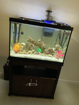 fishtank aquarium pecera 75gl with stand and equipment and fish for Sale in Houston, TX