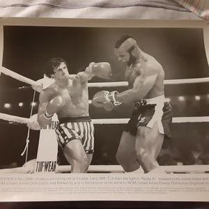 Rocky for Sale in Deltona, FL