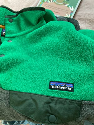 Patagonia Small Mens Pullover for Sale in Providence, RI