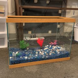 Fish Tank 20 Gallon for Sale in Richmond,  CA