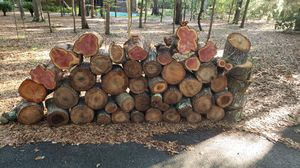 Fire wood for Sale in Richmond Hill, GA