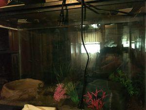 Fish tank for Sale in Utica, MI