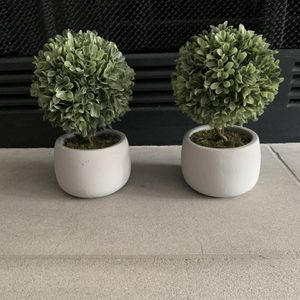 2 Small Fake Plants for Sale in Scottsdale, AZ