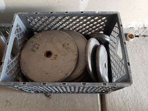 Weight set bench dumbell and bar bell for Sale in Thornton, CO