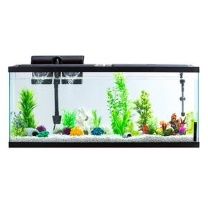 55gal aquarium and filter for Sale in San Diego, CA