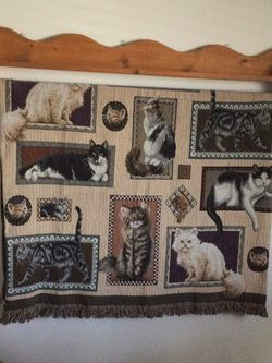 Cat Hanging Blanket for Sale in O'Fallon,  MO