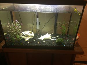 TopFin Aquarium for Sale in Hahira, GA