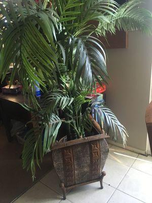 Fake plant , for Sale in La Habra, CA