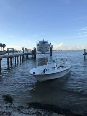 Bayliner for Sale in St. Petersburg, FL