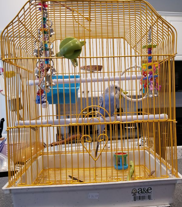 Parakeet cage and toys