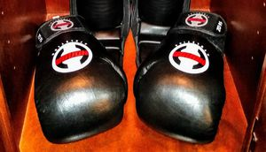 BOXING GLOVE set in good condition for Sale in LXHTCHEE GRVS, FL