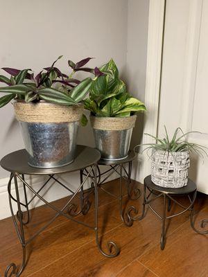 Cute Mini Plant Stands.🌿🌸🌿🌸🌿🌸. for Sale in Miami Gardens, FL